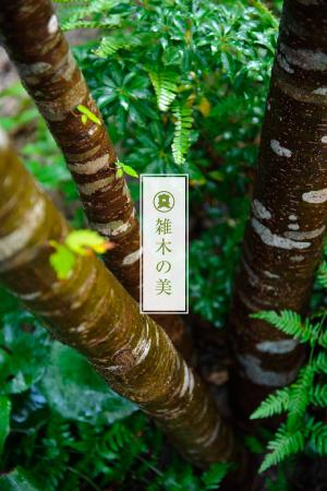長崎緑樹センターメニュー02