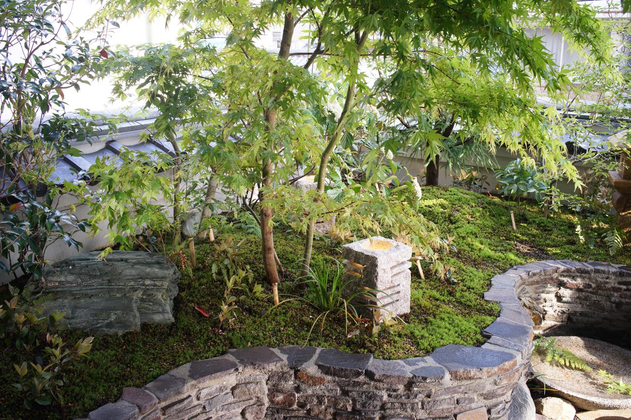 さり気ない風情が漂う苔の庭