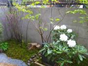 ベランダの空きスペースを利用した隠れ家ガーデン