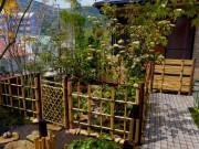 住宅の庭から茶事をおこなう露地に
